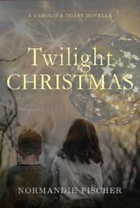 twilight-christmas-light-d